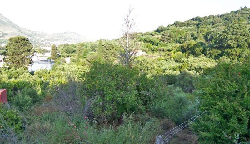 RHVO2 - The garden and Vew