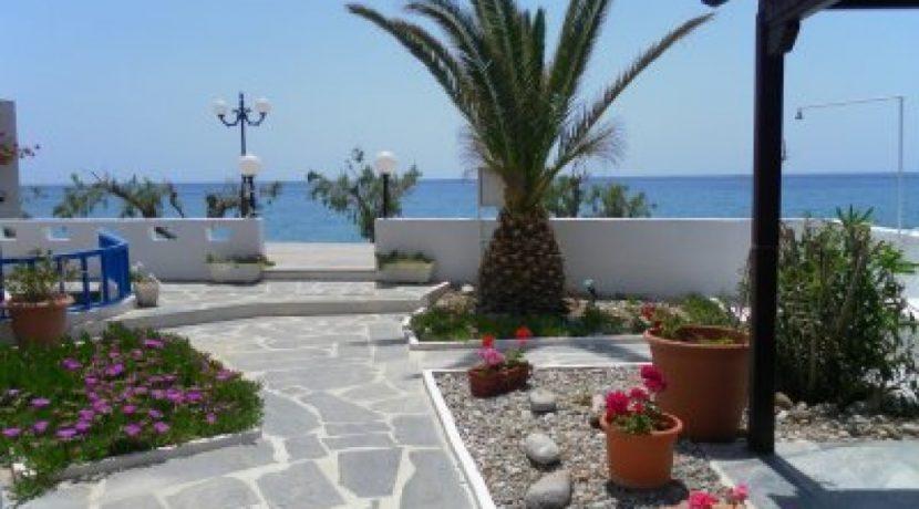 APMAK1 - garden view