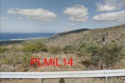 PLMIL14