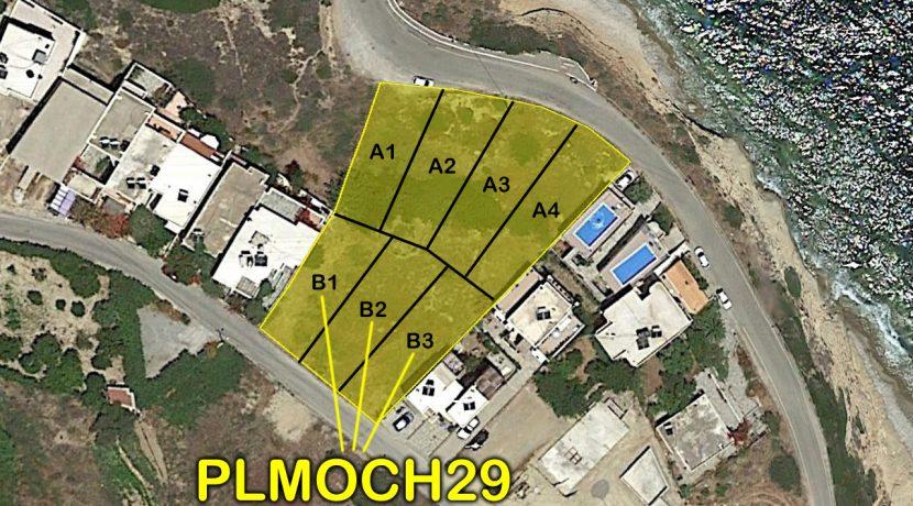 PLMOCH29