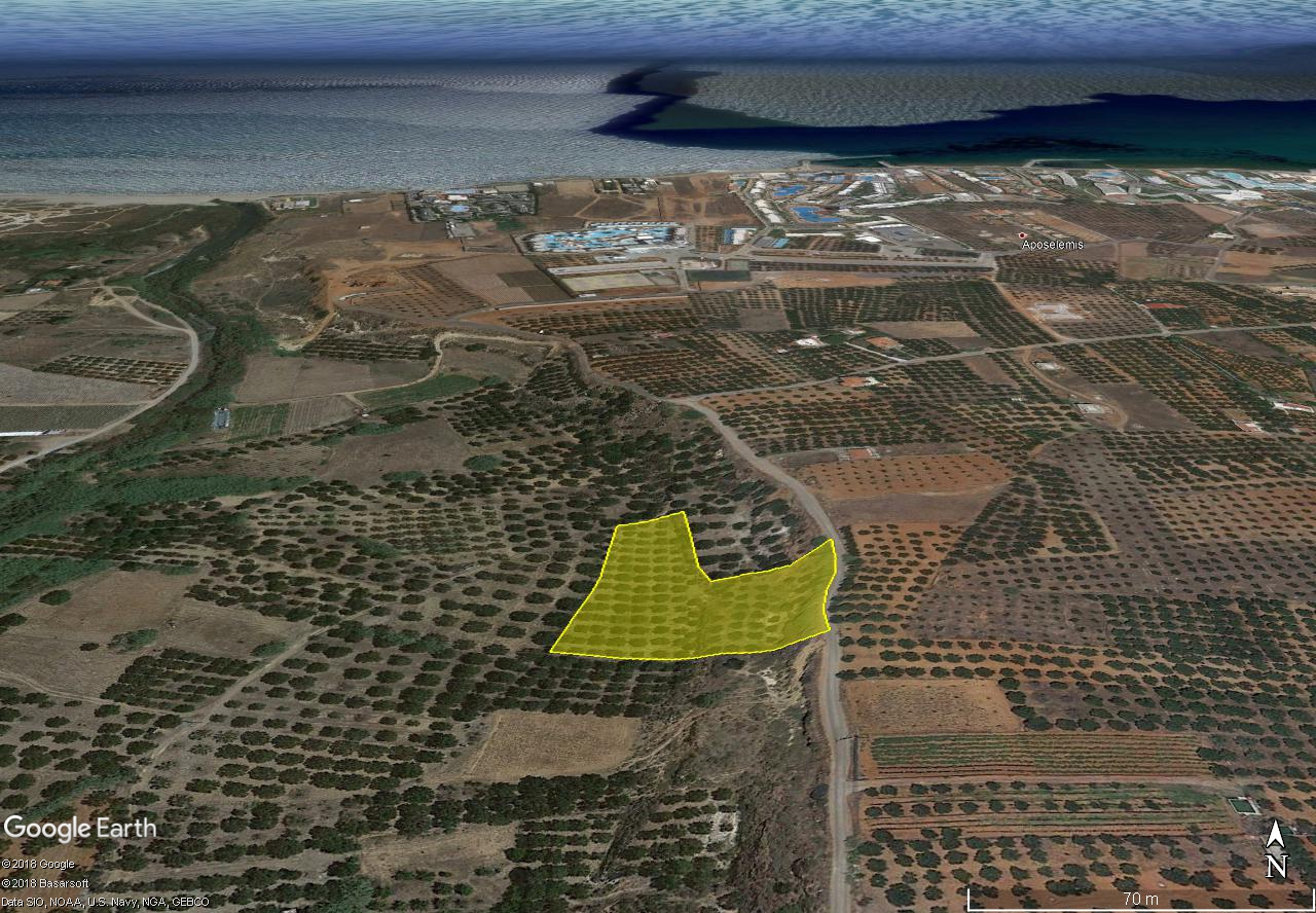 Seaview building land (5710 m2) with olive trees, east of Heraklion, Crete