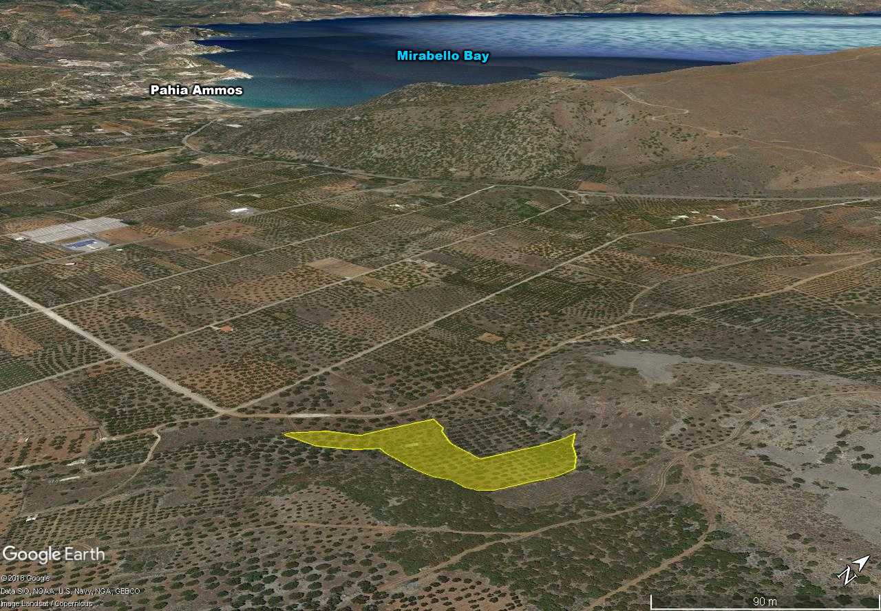 Building land with olive grove near beaches