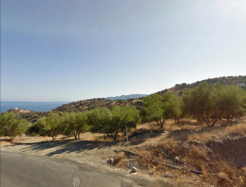 Seaview building land with olive grove, 9107 m2